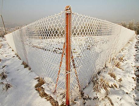 Fence by Adam Sworszt
