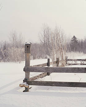 Fence And Birdhouse In The Snow by Gillham Studios