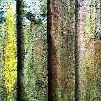 Fence Detail, Yellow by Anne Kotan
