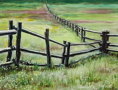 Fence Forever by Ray Cole