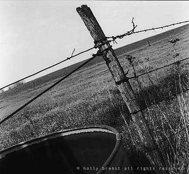 Fence by Holly Brobst
