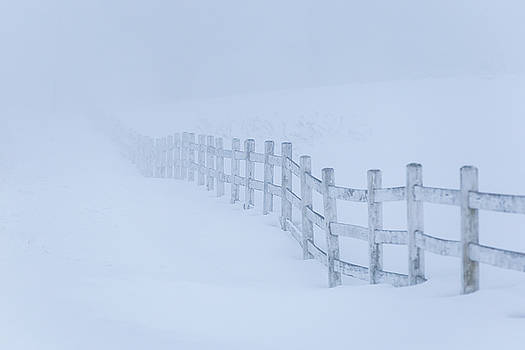 Fence in the Fog by Tim Kirchoff