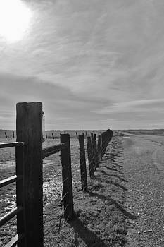 Fence by Julie Lourenco