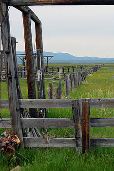 Fence Line at Camas Prairie by Michelle Halsey