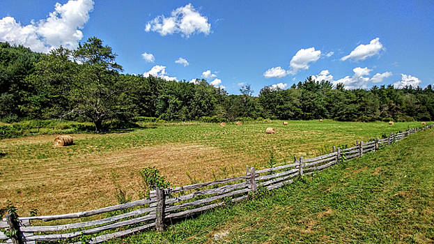 Fence Line by Bill Morgenstern