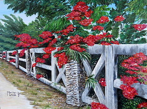 Fence Line by Marilyn McNish