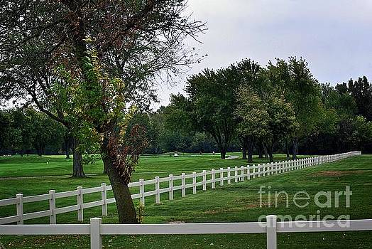 Frank J Casella - Fence on the Wooded Green