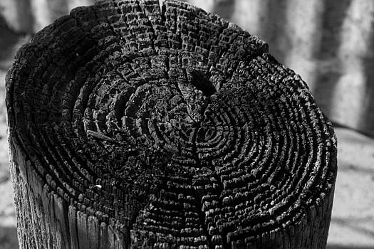 Fence Post Erosion by Garrett Griffin