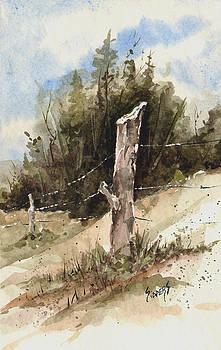 Sam Sidders - Fence Post