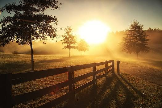 Fence Sunrise by Rod Flauhaus