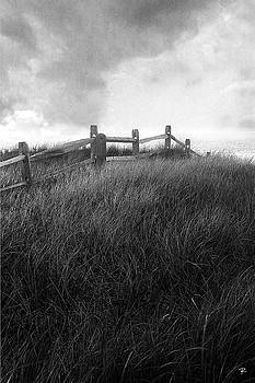 Fence by Tom Romeo