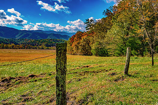 Fenceline View I by Steven Ainsworth