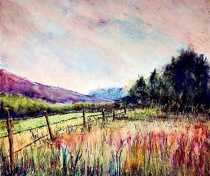Fences # 4 by Julia S Powell