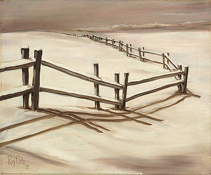Snowy Fence Forever by Ray Cole