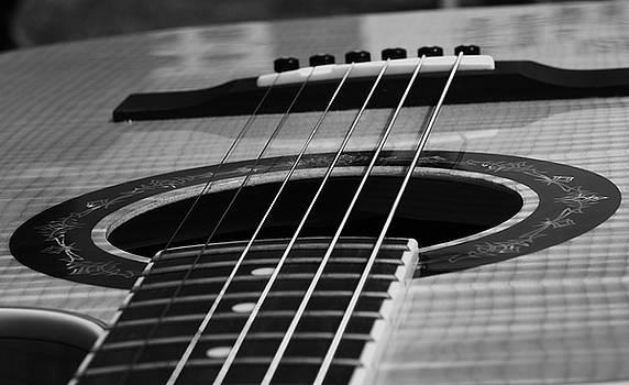 Fender black and white by J Austin