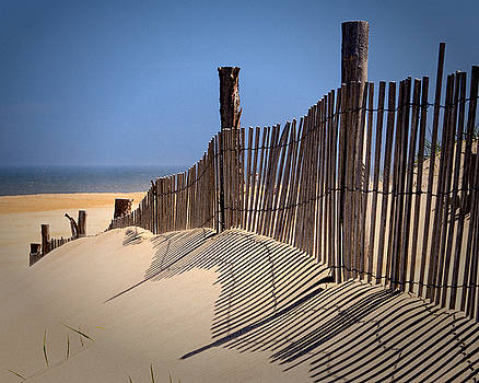 Bill Swartwout Fine Art Photography - Fenwick Dune Fence and Shadows