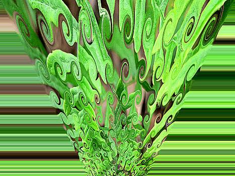 Fern Abstract by Kathy K McClellan