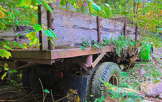 Fern Growing HH Truck by Kathryn Barry