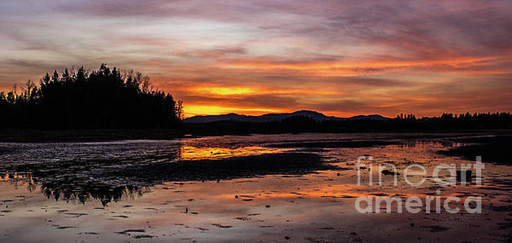 Fern Ridge Sunset 1 by Michael Cross