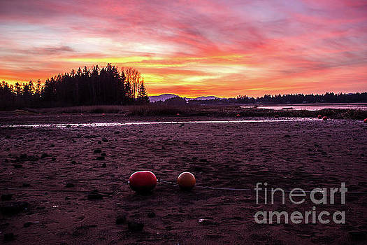 Fern Ridge Sunset 2 by Michael Cross
