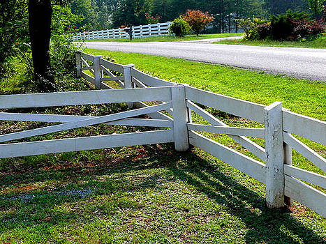 Ferncliff Fences by Don Whipple