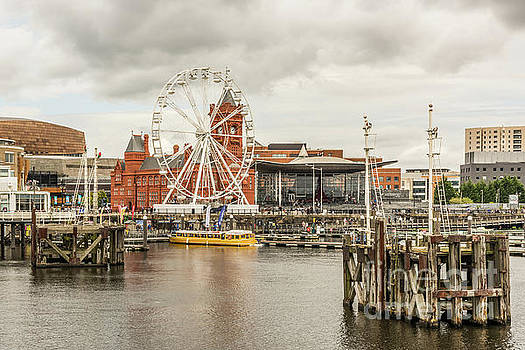 Ferris Wheel At The Bay by Steve Purnell