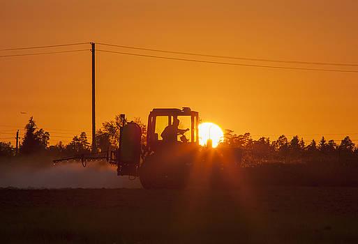Ramunas Bruzas - Fertilizing The Soil