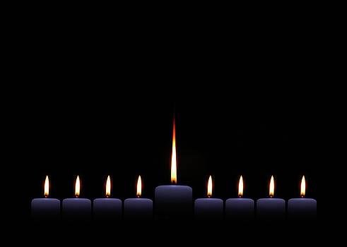 Festival of Lights by Alynne Landers