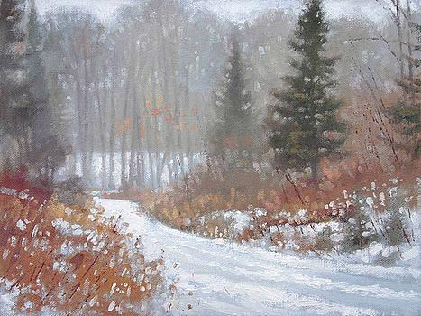 Few Tracks Winter by Larry Seiler