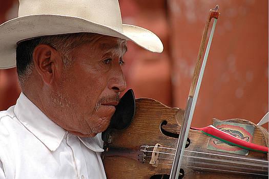 Fiddler by Pedro Katz