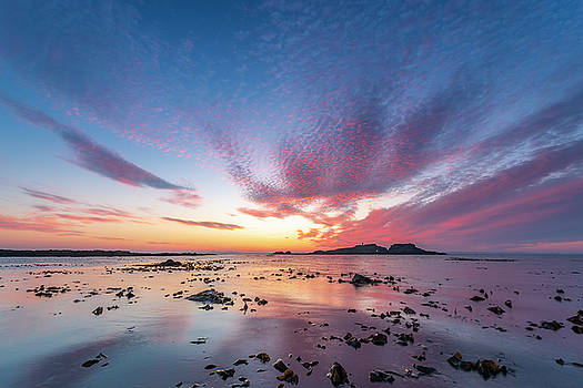 Fidra Island by Scott Masterton