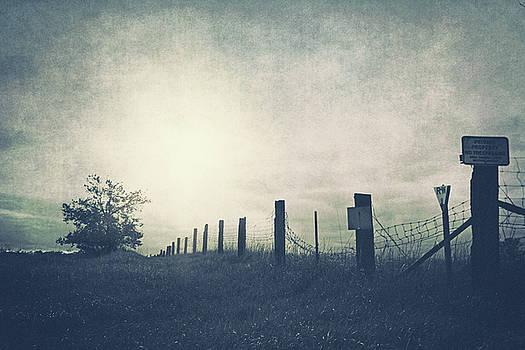 Field beyond the fence by Angela King-Jones