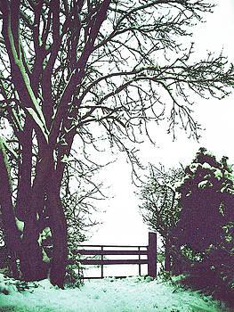Field Gate by Anne Kotan