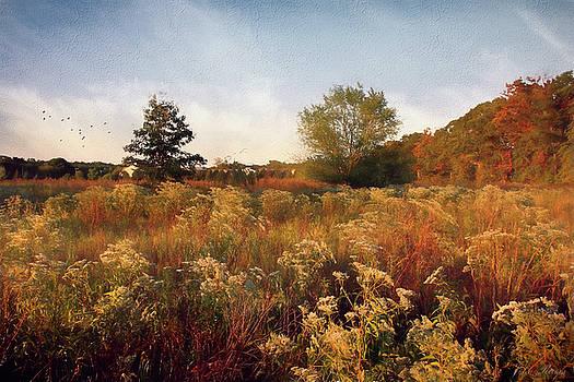 Field by John Rivera