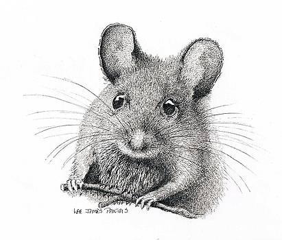 Lee Pantas - Field Mouse or Meadow Vole