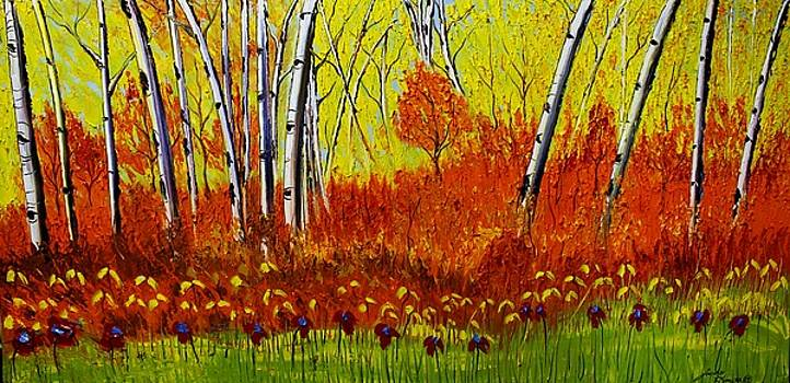 Field Of Birch Trees During Autumn by Portland Art Creations