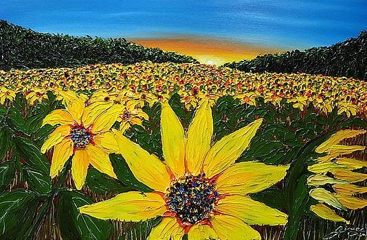 Field Of Blue Sky Yellow Sunflowers by Portland Art Creations