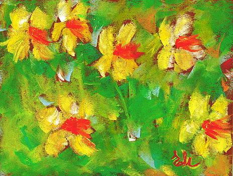 Field Of Daffodils by Elena Malec