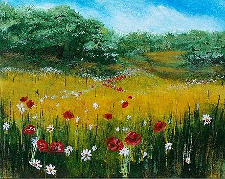 Field of Daisies by Chuck Kemp