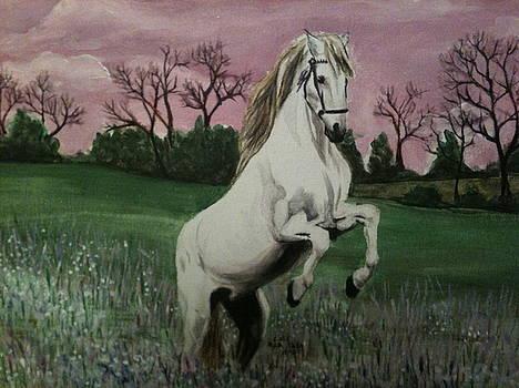 Field Of Dreams by Carol Spitko