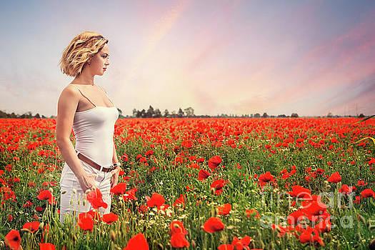 Field Of Dreams by Evelina Kremsdorf