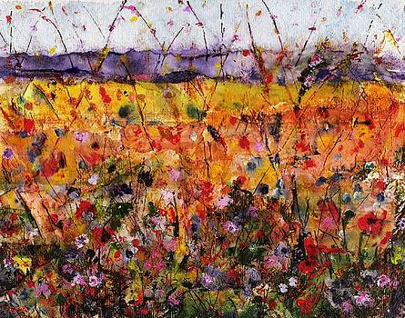 Field of Dreams by Frances Marino