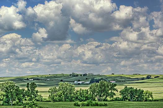 Nikolyn McDonald - Field of Dreams - Iowa - Farm Country