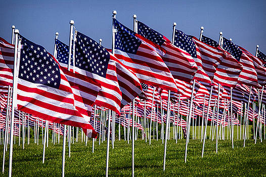 Bill Swartwout Fine Art Photography - Field of Flags For Heroes
