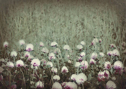 Field Of Flowers by Lisa Kaye