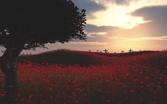 Field Of Poppies by Chris Bird