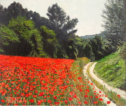 Field Of Poppies by Juan Jose Abenza