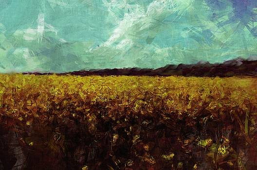 Field of Yellow by Mark Denham