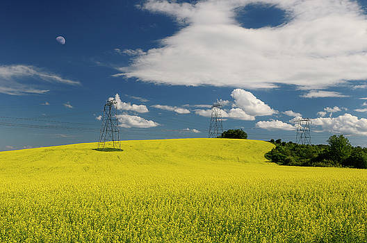 Reimar Gaertner - Field of yellow rapeseed crop with moon and hydro towers against