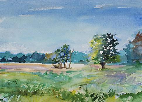 Field on Hoxie Road by Adam VanHouten